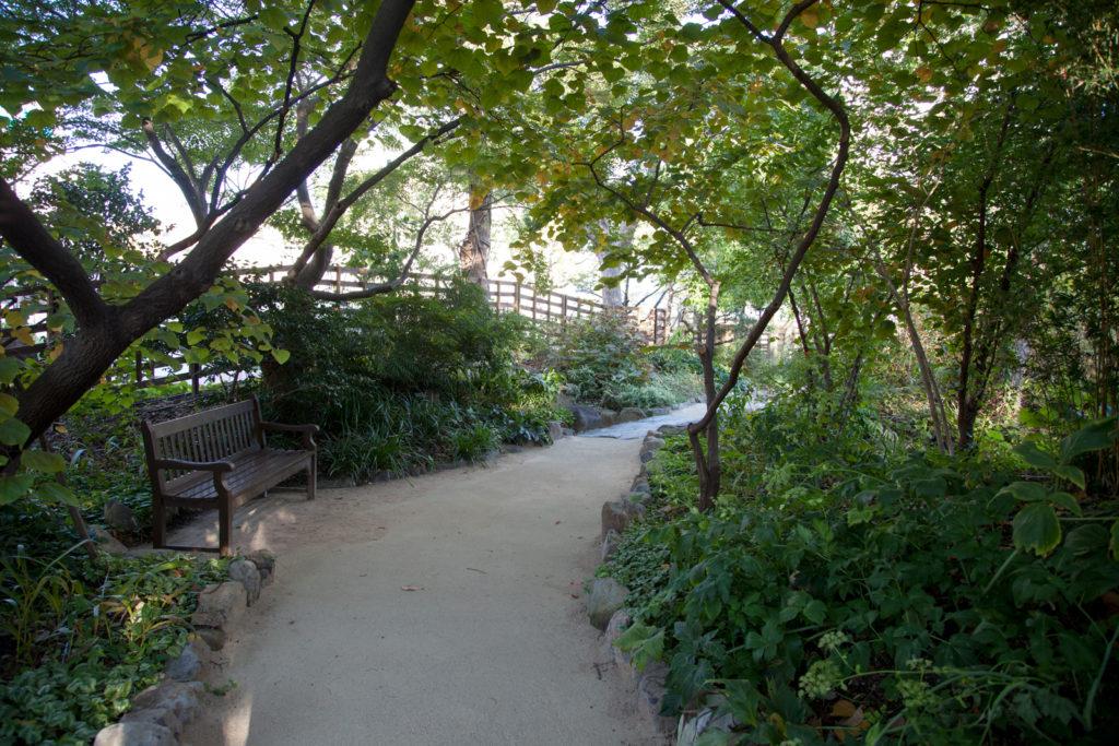 宝塚市立文化芸術センター庭園 メインガーデンにあるベンチ